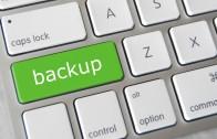 cPanel ve Plesk Panel üzerinde Backup almak
