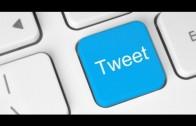 Web Kılavuzu Twitter Beslemeleri