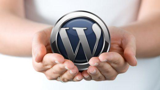 WordPress Şifre Sıfırlama İşlemi